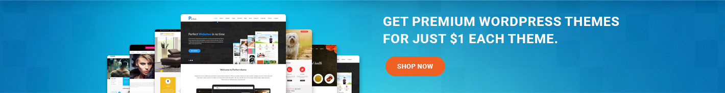 Get Premium WordPress Themes For Just $1 Each Theme.