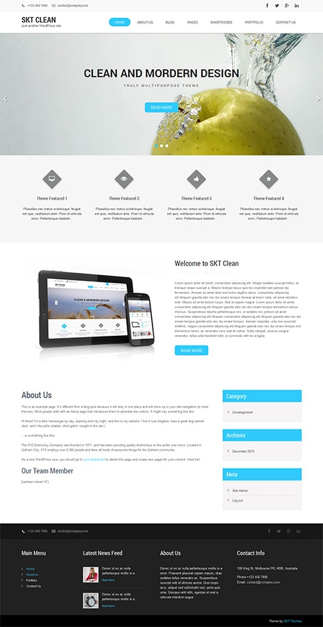 free clean WordPress theme