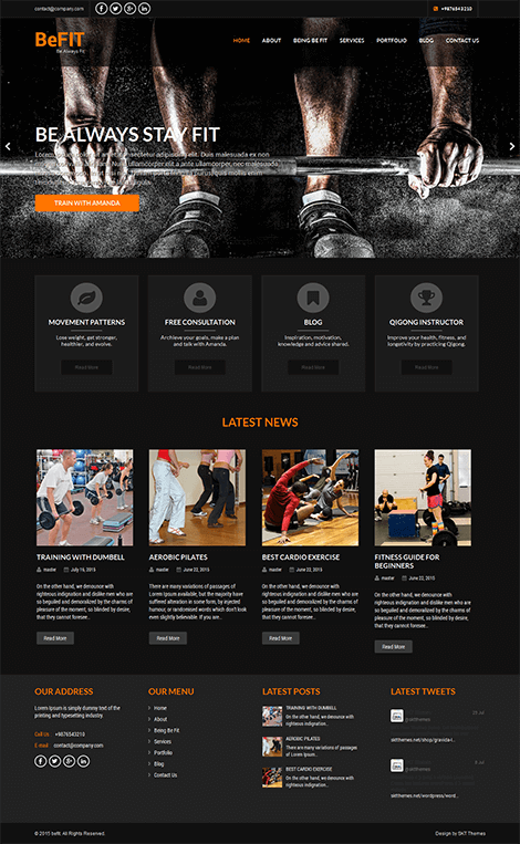 free diet WordPress theme