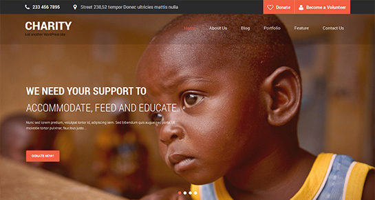 free charity WordPress theme