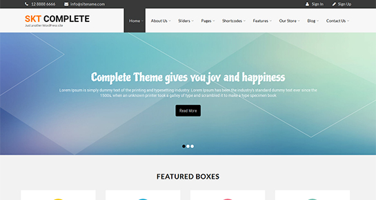 free complete WordPress theme