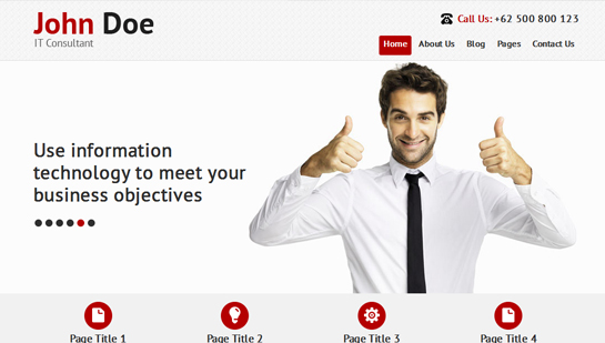 free consultant WordPress theme