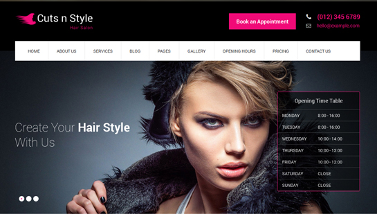 free hair salon WordPress theme