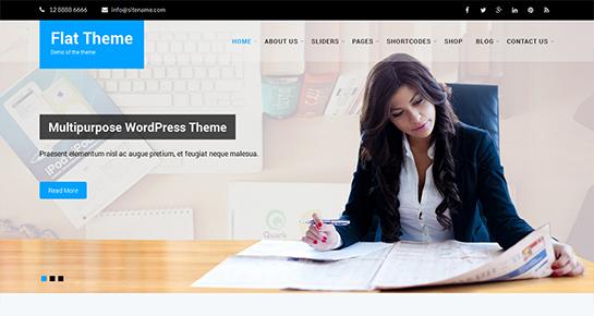 flat - Multipurpose WordPress Themes