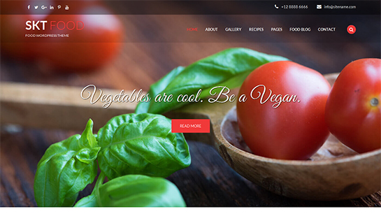 food - Food WordPress theme