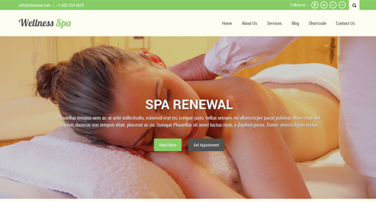 free beauty spa WordPress theme