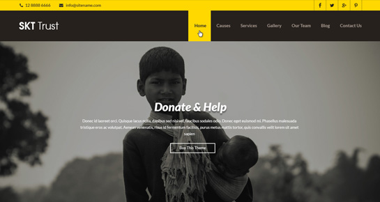 trust-wordpress-theme