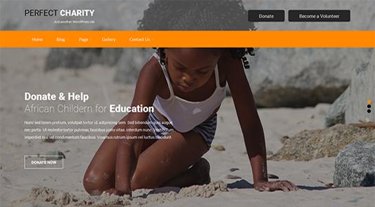 perfect-charity WordPress theme