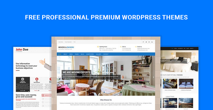 Free Professional Premium WordPress Themes for Professional Websites