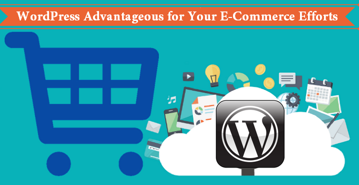 WordPress Advantageous for Your E-Commerce Efforts