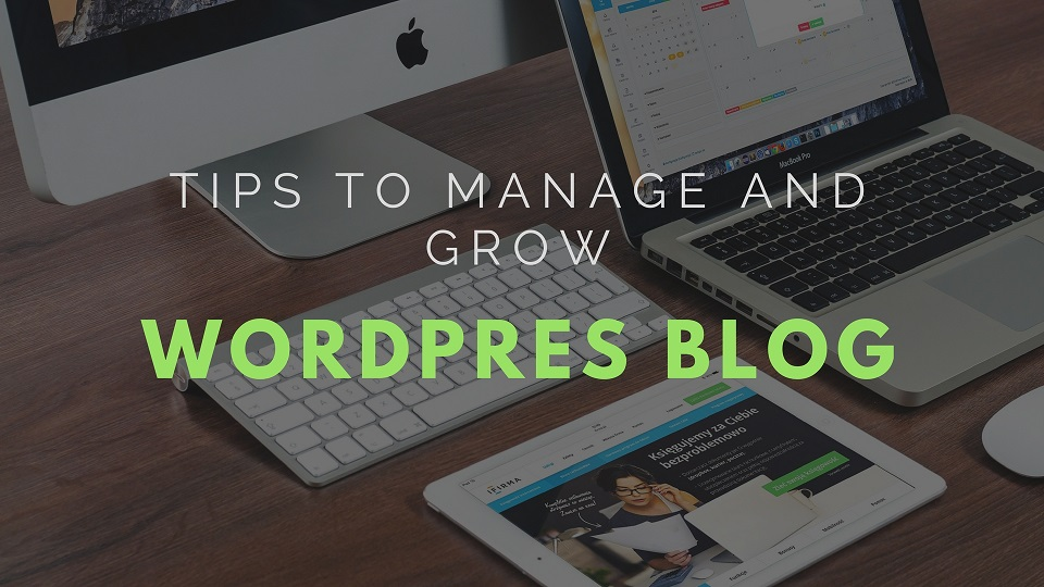 Tips to manage and grow WP blog