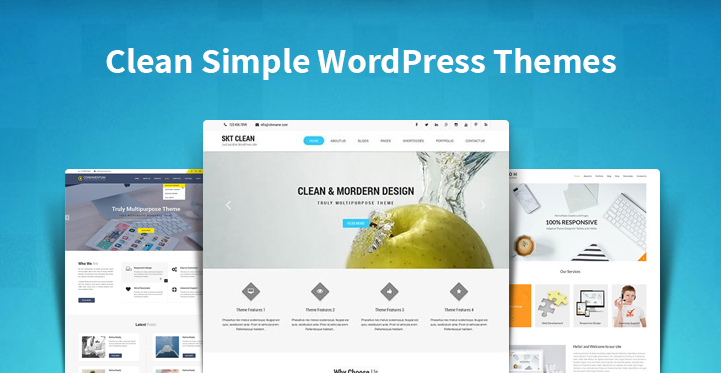 Clean Simple WordPress Themes