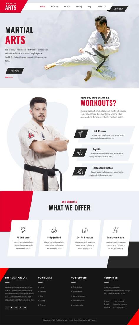 Free karate WordPress theme