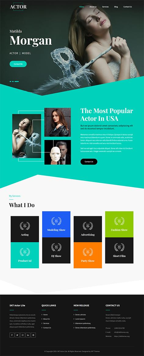 Free Comedian WordPress Theme